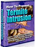 Prevent Termite Intrusion