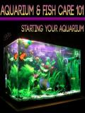 Aquarium and Fish Care 101