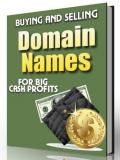 Buying and Selling Domain Names For Big Cash Profits