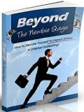 Internet Marketing - Beyond The Newbie Stage