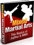Jujitsu and MMA  Basics   Mixed Martial Arts