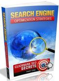 Search Engine Optimization Strategies – Part One