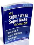 $900/Week Super Niche Revealed