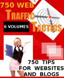 750 Web Traffic Tactics for Websites and Blogs