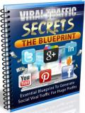 Viral Traffic Secrets : The Blueprint