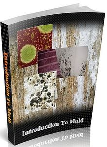 how to find hidden mold in your house